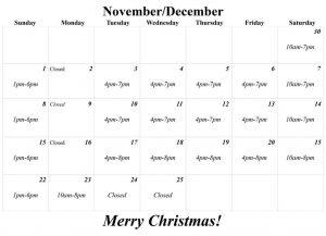 2019 Santa Photo Calendar
